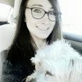 Back to Basics Doggy Daycare dog boarding & pet sitting