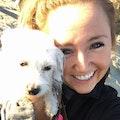RoverAnne's Dog Vacation dog boarding & pet sitting