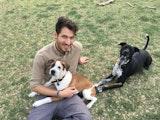 Rony's Pet Sitting dog boarding & pet sitting