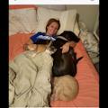 Cooper's home doggie boarding dog boarding & pet sitting
