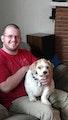 Josh's Dog Boarding dog boarding & pet sitting