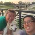 Sonia&Henry's DogCare [Big yard] dog boarding & pet sitting