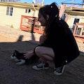 Affordable Dog Sitting dog boarding & pet sitting