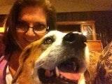 Happy House-N-Hound Petsitter dog boarding & pet sitting