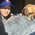 Cassy's Dog Boarding dog boarding & pet sitting