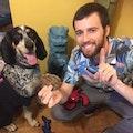 DoggyDoood Services dog boarding & pet sitting