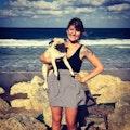 Britt's Boarding dog boarding & pet sitting