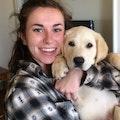 Madeline's Pet Paradise dog boarding & pet sitting