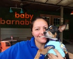 The Rox Retreat dog boarding & pet sitting