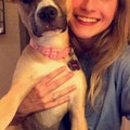 Becca's Dog Sitting dog boarding & pet sitting