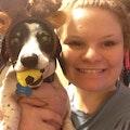 Rachel's Pampered Pets dog boarding & pet sitting