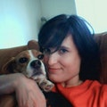 Reliable Dogtown Dog Lover! dog boarding & pet sitting