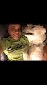 Labrador LOVES dog boarding & pet sitting