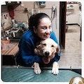 Auntie Vee's dog boarding & pet sitting