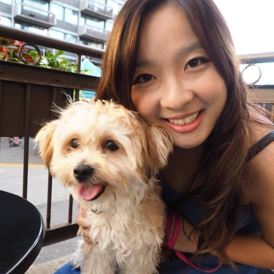 Tiffany's dog boarding