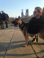 Temple Graduate Student Services dog boarding & pet sitting