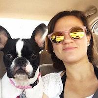 Merma's dog day care