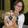 Professional Dog Mom, the K9 nanny dog boarding & pet sitting