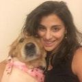 Jillian's Bark & Breakfast Retreat dog boarding & pet sitting