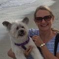 Mickie's Knoxville Pet Sitting dog boarding & pet sitting