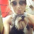 Dog's Best Friend - Pet Sitter dog boarding & pet sitting